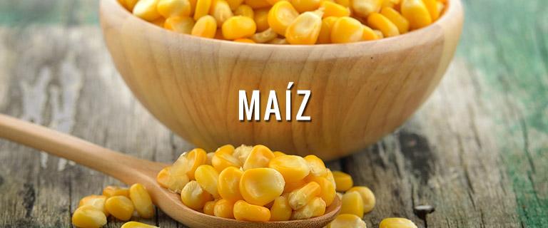 productos-maiz