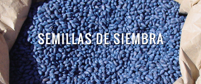 productos-semillas